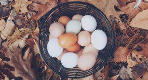 Eierkoeken zonder toegevoegde suiker