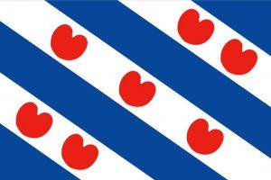 'Drietalige scholen in Friesland moeten gestimuleerd worden'