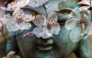 De kracht van meditatie, visualisatie en massage in groepsverband