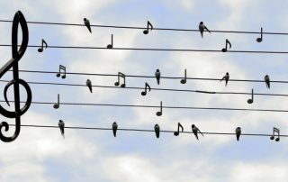 Muziek om je heen