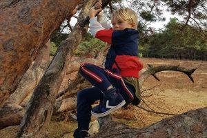 Bomen klimmen - zijn alle veiligheidsregels wel in het belang van kinderen?